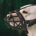Adjustable Metal Buckle Mask Nylon Pet Dog Muzzle Anti Bark Bite Chew Safety for Training Black metal buckle_3 #