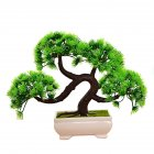 Tree Plant Home Desktop Decoration