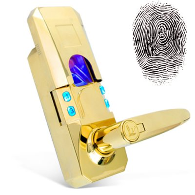 Fingerprint + Access Code Door Lock (Gold Edition)