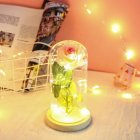 Glass Cover Rose Flowers LED Light String Gift Women Girls on Birthday Holiday Christmas Powered by Batteries pink white