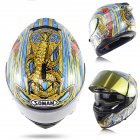 Motorcycle Racing Helmet ECE Standard Four Seasons Double Lens Stylish Full Face Helmet L