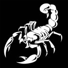 Scorpion Totem Decals Car Stickers Car Styling Vinyl Decal Sticker for Cars Decoration white