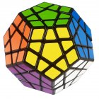 Shengshou Megaminx Brain Teaser Magic Cube