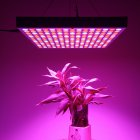 45Watt LED Grow Light