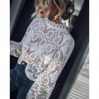Women Sexy Solid Color See Through Long Sleeve Stand Collar Lace Shirt white_XL