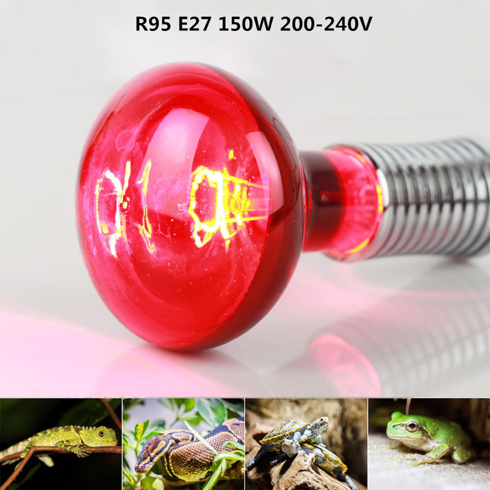 150W R95 Infrared Bulb for Lizard Tortoise Snake Heat Lamp