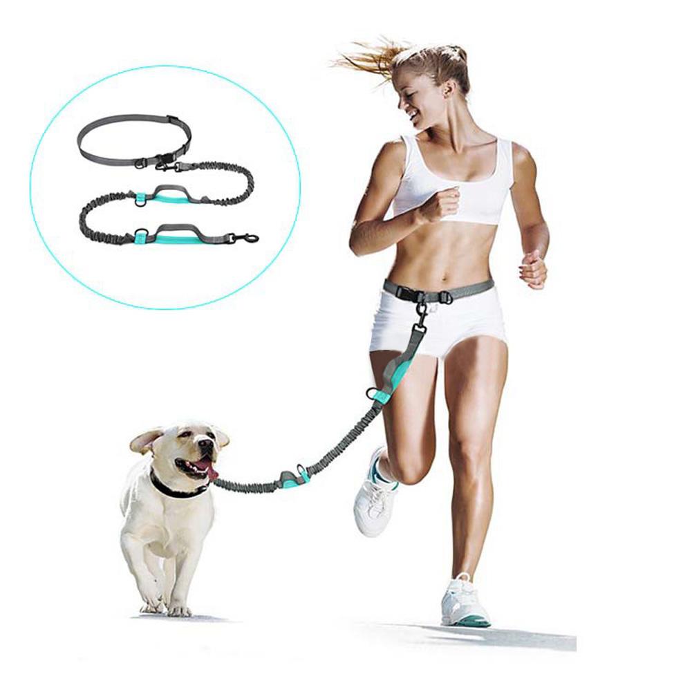 Pet Supplies Multifunctional Running Reflective Pull Dog Leash Double Elastic Dog Leash Gray + green