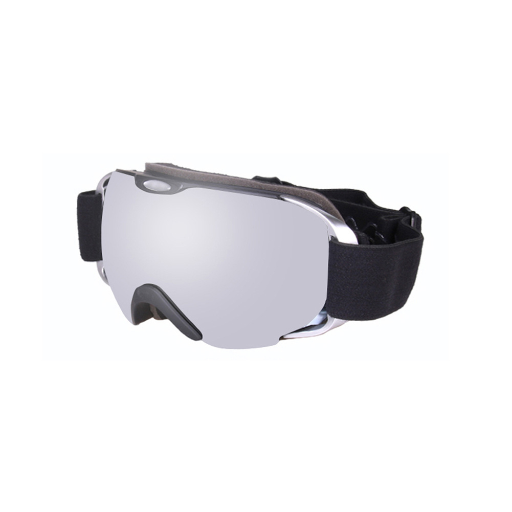 Ski Goggles Double Layer Antifog Large Spherical Snow Sports Snowboard Mountain Climbing Goggles Space silver
