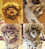 Generic Pet Costume Lion Mane Wig for Cat Christmas Xmas Santa Halloween Clothes Festival Fancy Dress up (Black, XS)