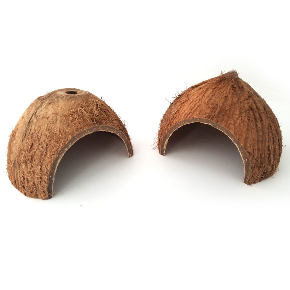 Cute Natural Coconut Shell Hiding House Cave for Reptile Little Pet with top hole