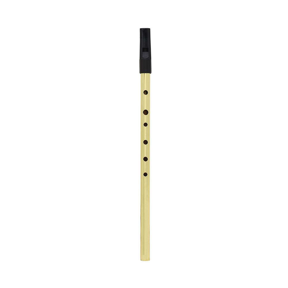 Irish Whistle Flute D Key Ireland Flute 6 Hole Musical Instrument  Gold