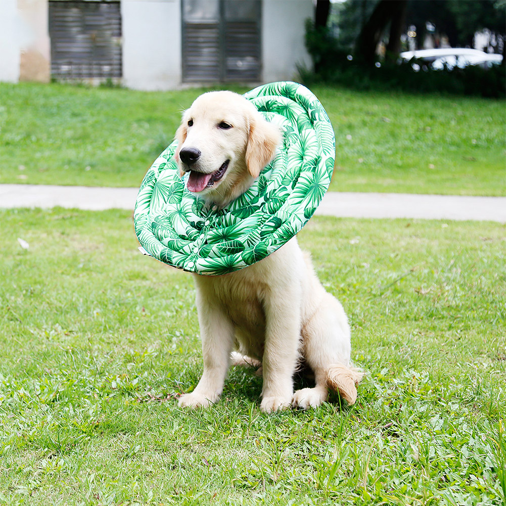 Wound Healing Collar Dogs Cats Medical Protection Neck Ring green_XS
