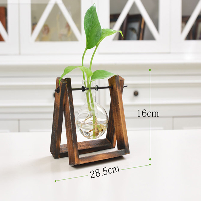 Creative Plant Glass Hydroponic Container