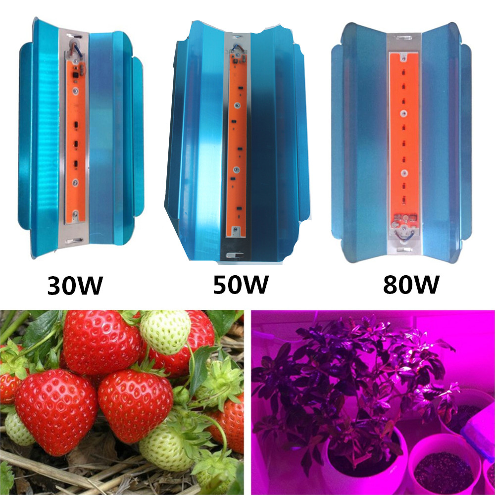 LED Full Spectrum Iodine Tungsten Plant Growing Lamp