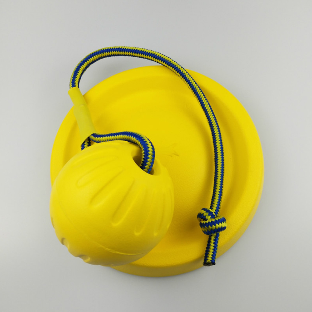 Funny Bite Resistant Training Ball Chew Toy with Rope for Pet Dog 7 cm with rope
