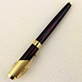 [EU Direct] Advanced Fountain Pen
