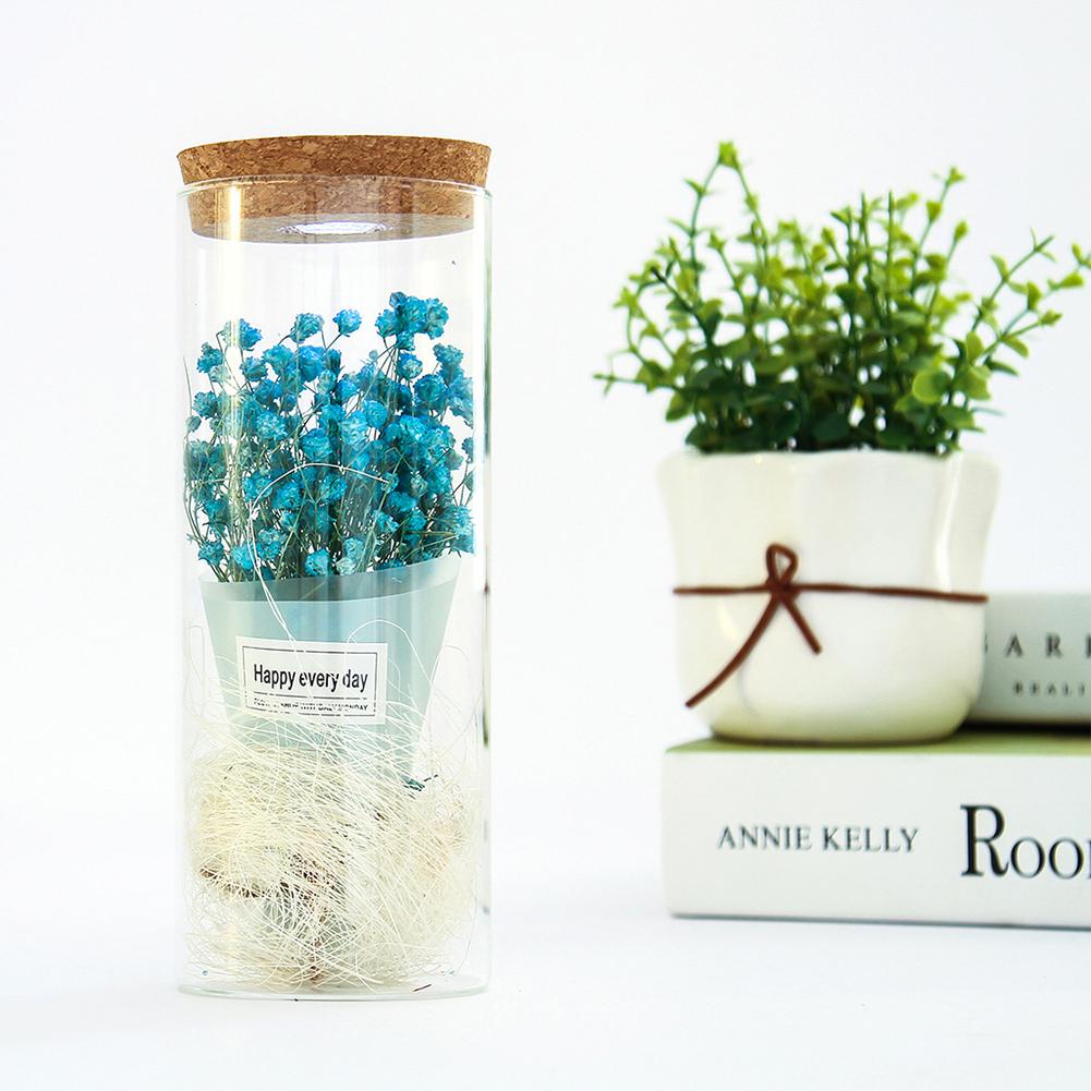 Creative Babysbreath Glass Dome with LED Ornament Artificial Flower Microlandscape Decoration blue