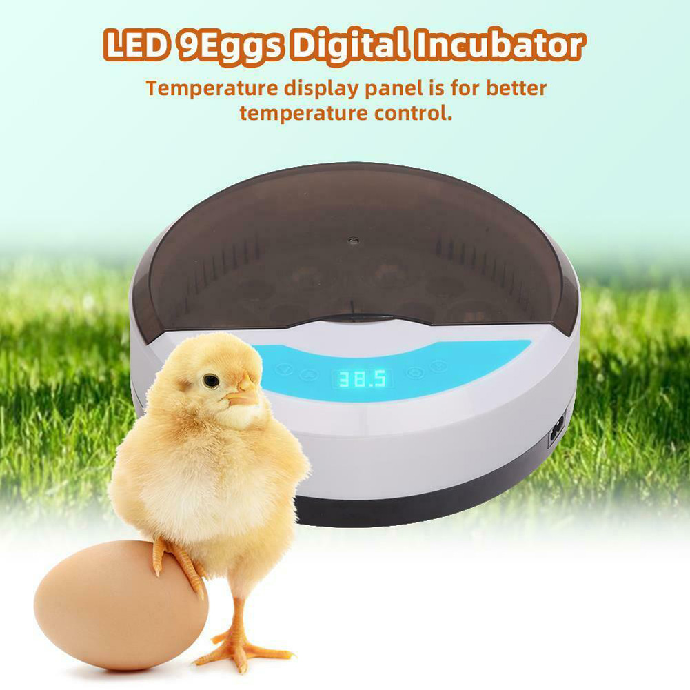 9 Eggs Incubator Stable Temperature Control Compact Button Led Light for Incubation Tools European regulations