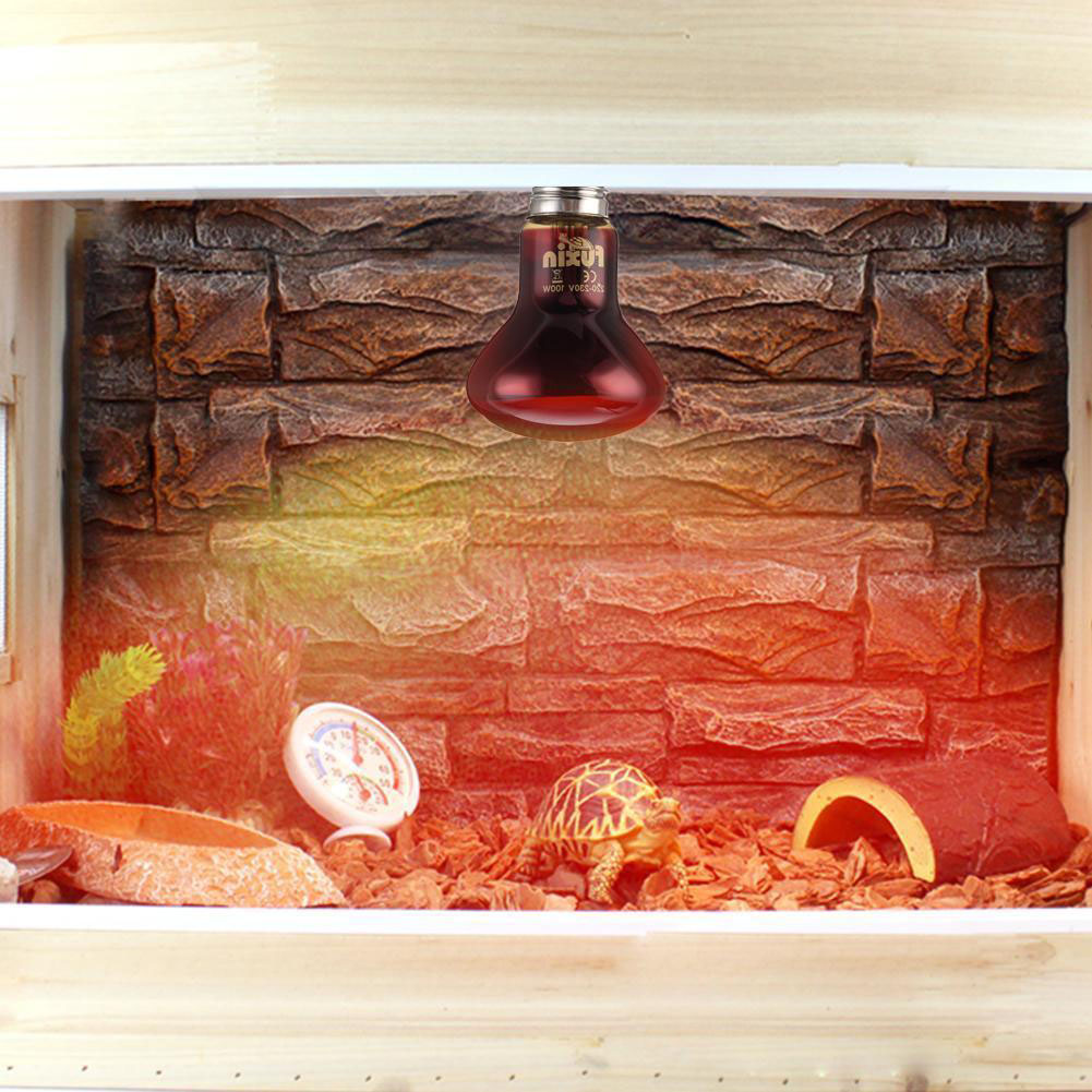 LED Red Reptile Night Light