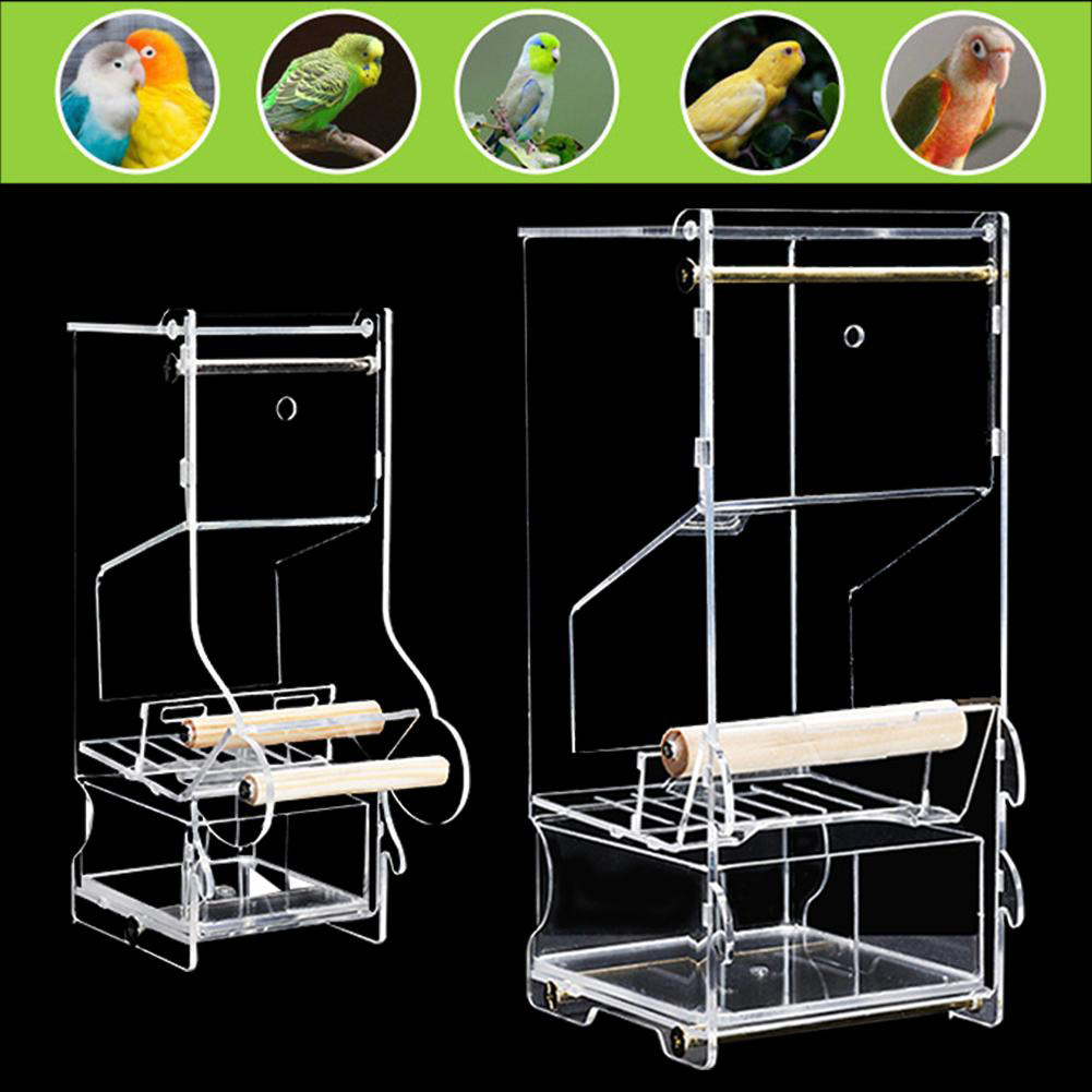 Parrot Bird Automatic Seed Feeder Tray Transparent Board Supplies Anti-Splashing  Small