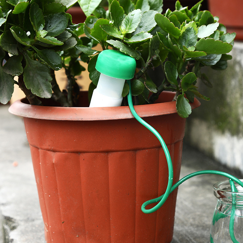 [EU Direct] Self-Watering Probes - Package of 5