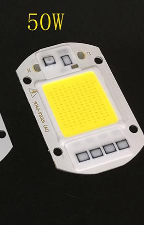 AC 110V 220V LED Floodlight COB Chip Smart IC Driver Bulb Lamp 20W 30W 50W 50W AC110V Cool White