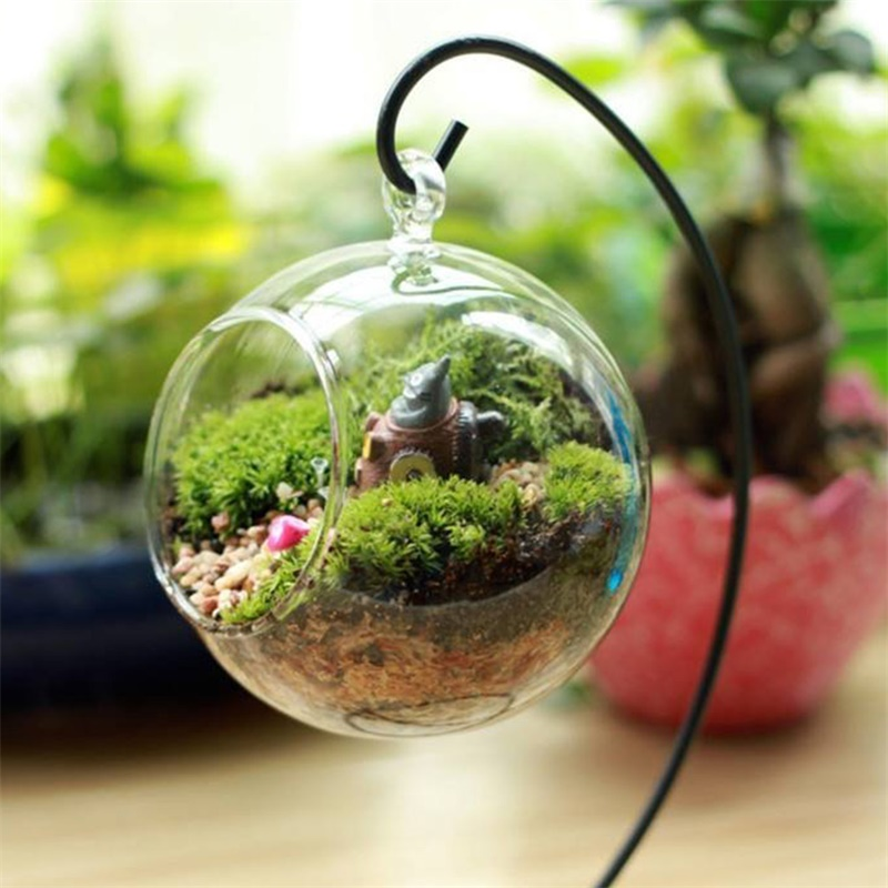 Creative Clear Glass Ball Vase