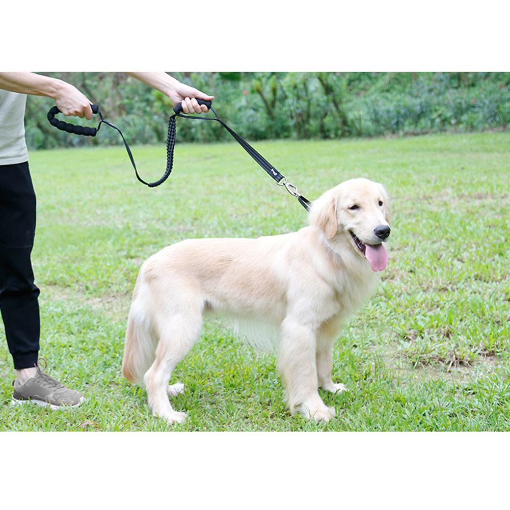 Multifunction High Stretch Pet Leash Chain for Outdoor Dogs Training Walking