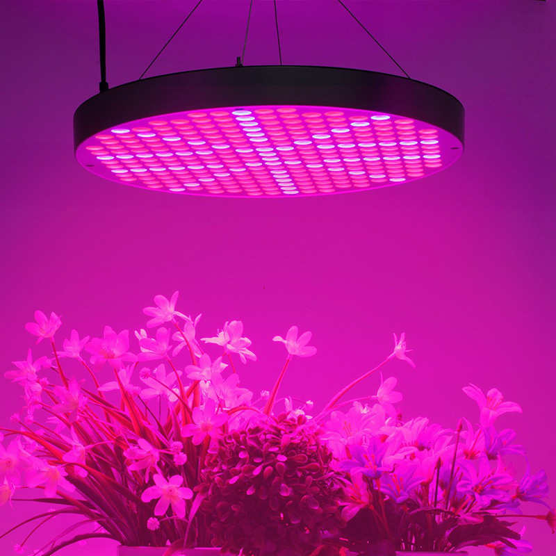 Wholesale 50watt Led Grow Light From China