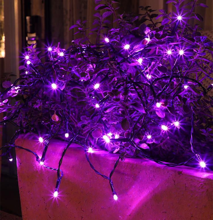 2M 20LEDs String Light Purple Lamp for Outdoor Garden Decor Battery Powered Purple light_2m 20LED