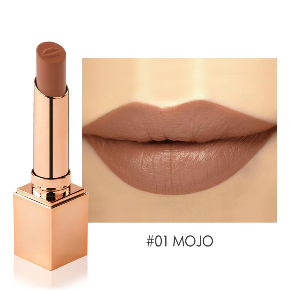 Fashion Matte Lipstick Waterproof Long Lasting No-fading Moisturizing Lip Gloss