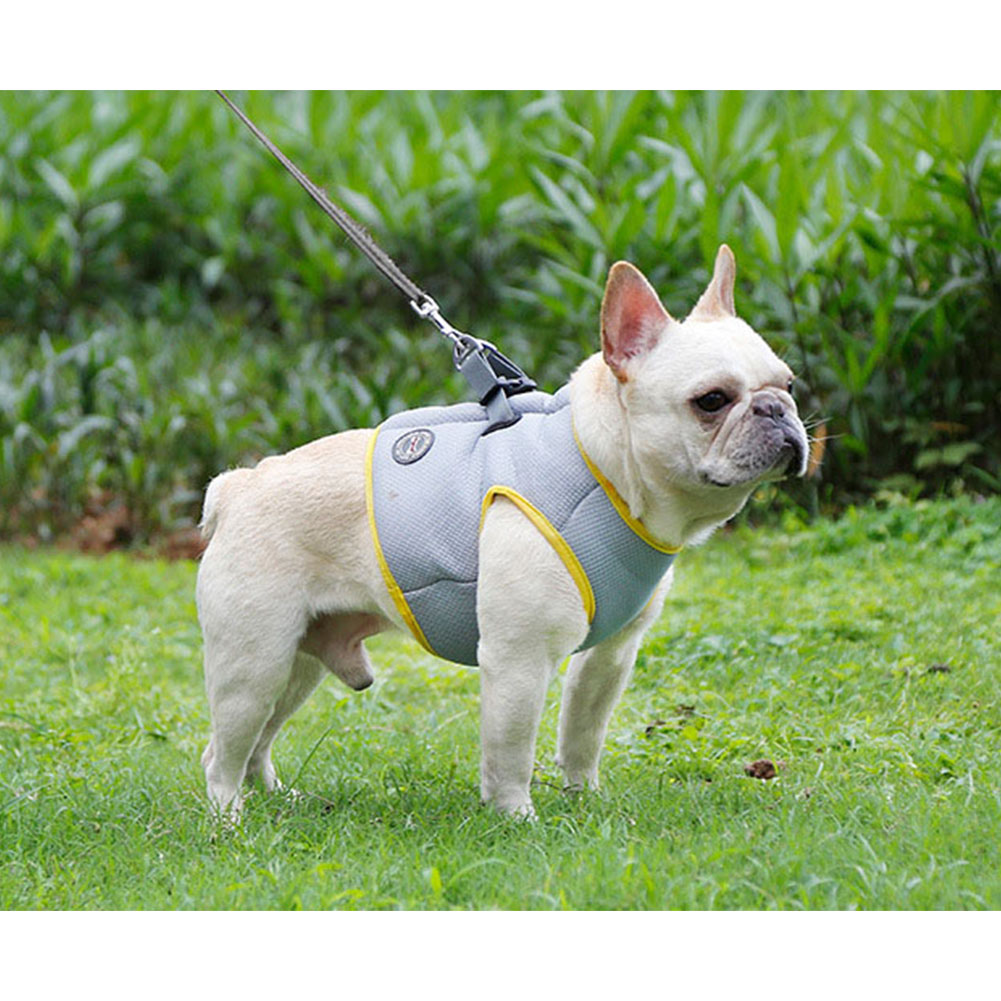 Pet Cooling Harness Summer Vest for Dog Puppy Outdoor Walking Gray yellow_XS
