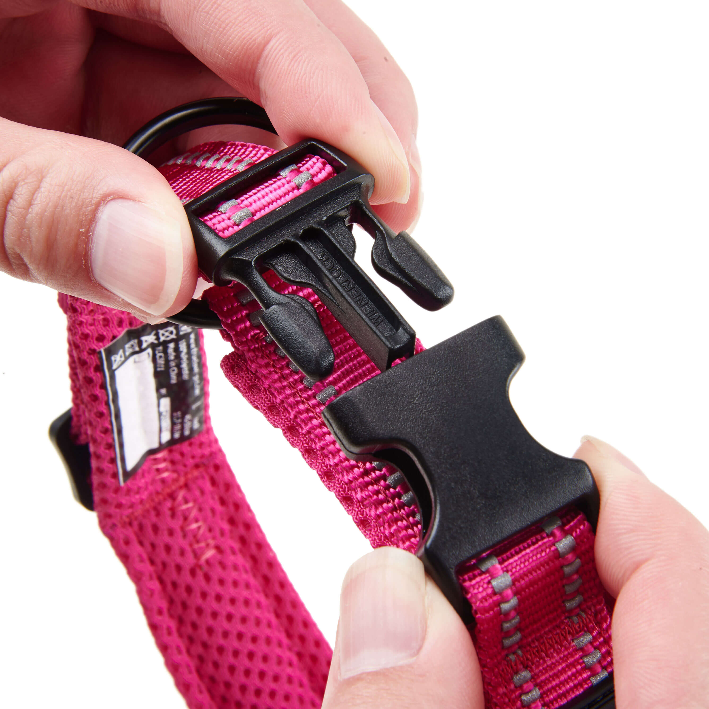 [US Direct] Original Truelove Reflective Dog Collar with Plastic Clip-in Buckle, High-grade Soft Padded Nylon Webbing, No Choke Basic Collars (XS, Fuchsia) Rose_XS