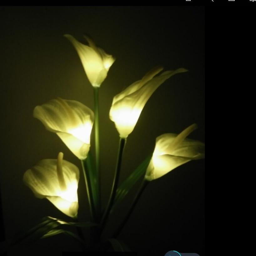 Solar-Powered 5 LEDs Pin Lamp Simulate Calla Lily Night Light Yard Garden Decoration Warm white light