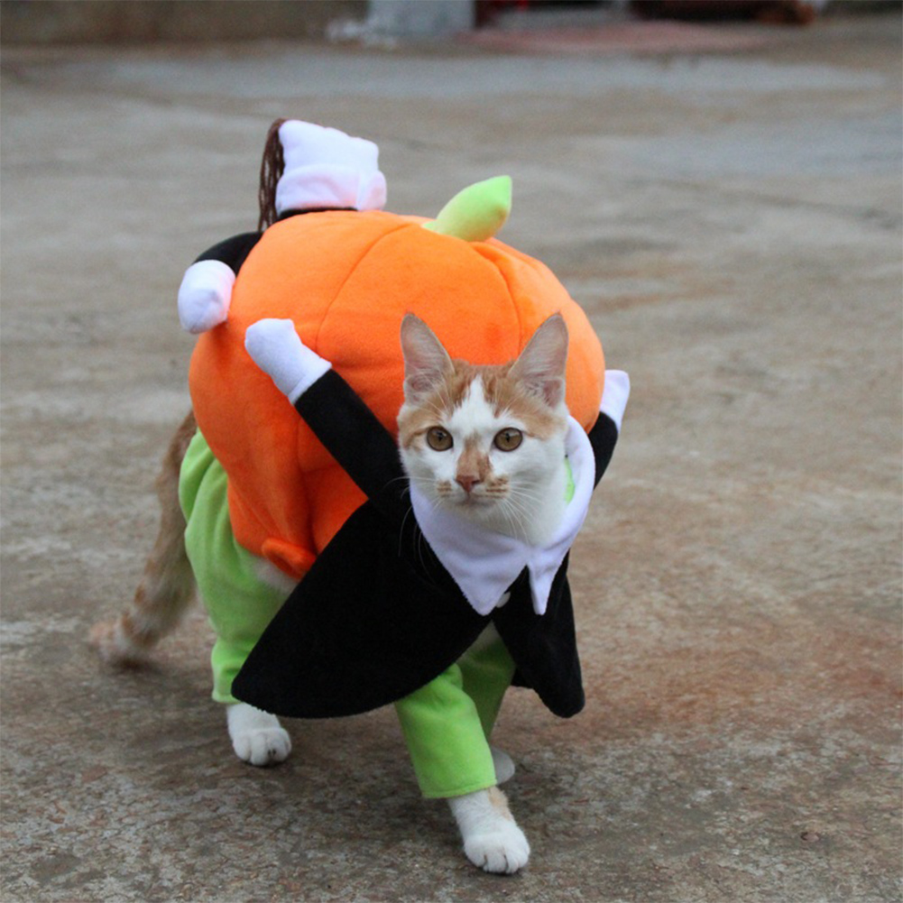 Pet Halloween Cosplay Clothes Funny Pumpkin Dog Costume for Small Dog black_XL