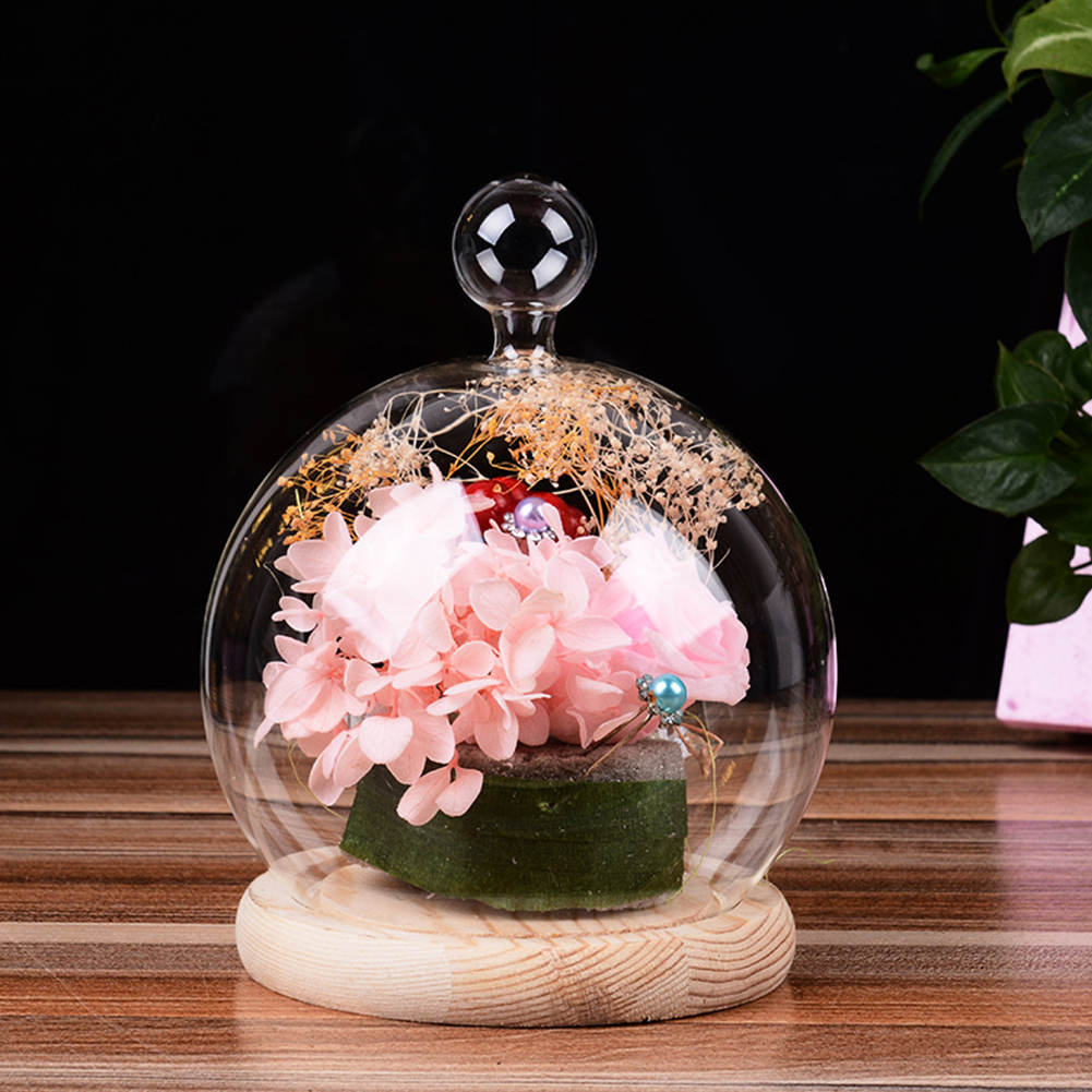 Glass Globe Display Dome Cover with Wood Base Heart Shape Handle Home Decoration Small ball top cover + wood color flat base
