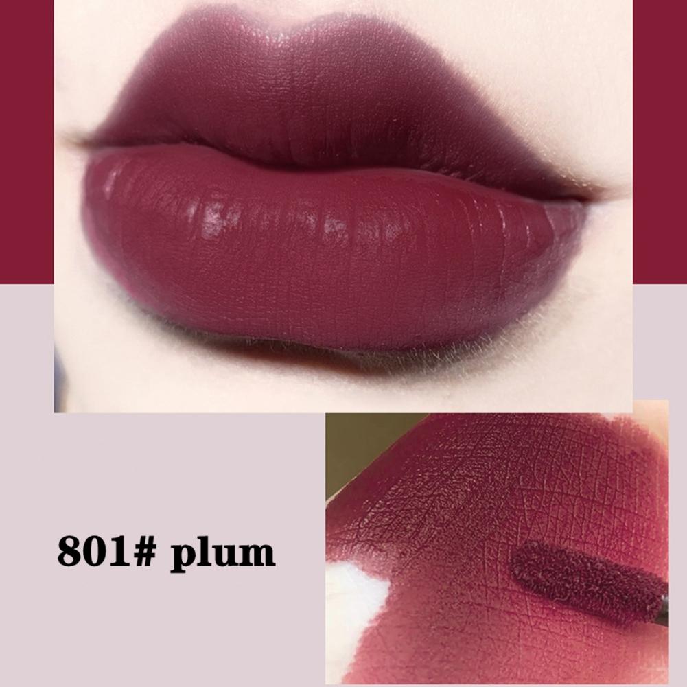 Women Matte Lipgloss Lipstick Ink Matte Blur Lip Tint Velvet Matte  Longlasting Lip Gloss