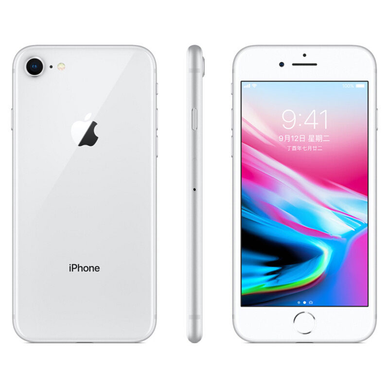 Apple iPhone 8 12MP+7MP Camera 4.7-Inch Screen Hexa-core IOS 3D Touch ID LTE Fingerprint Phone with Euro Plug Adapter Silver_64GB