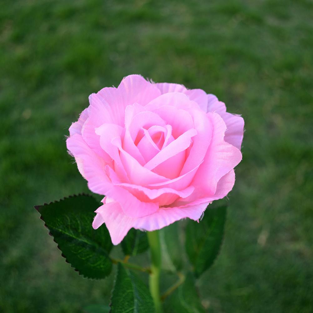 Simulate Solar-powered LED Rose Lawn Pin Lamp Landscape Light Festival Yard Garden Decoration Pink flower