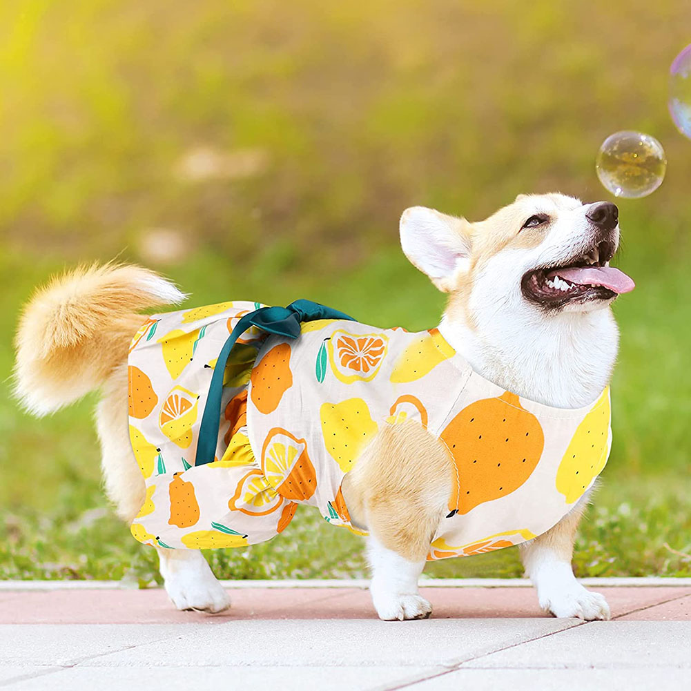 Polyester Pet  Clothes Summer Plaid    Skirt For Dog Pet Clothing Supplies yellow_M