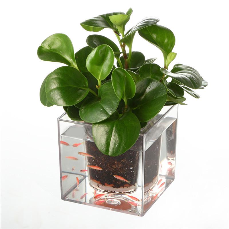 Creative Double-deck Multi-function Fish Tank Flowerpot Self-watering Transparent Planter Transparent_12 * 12 * 12cm