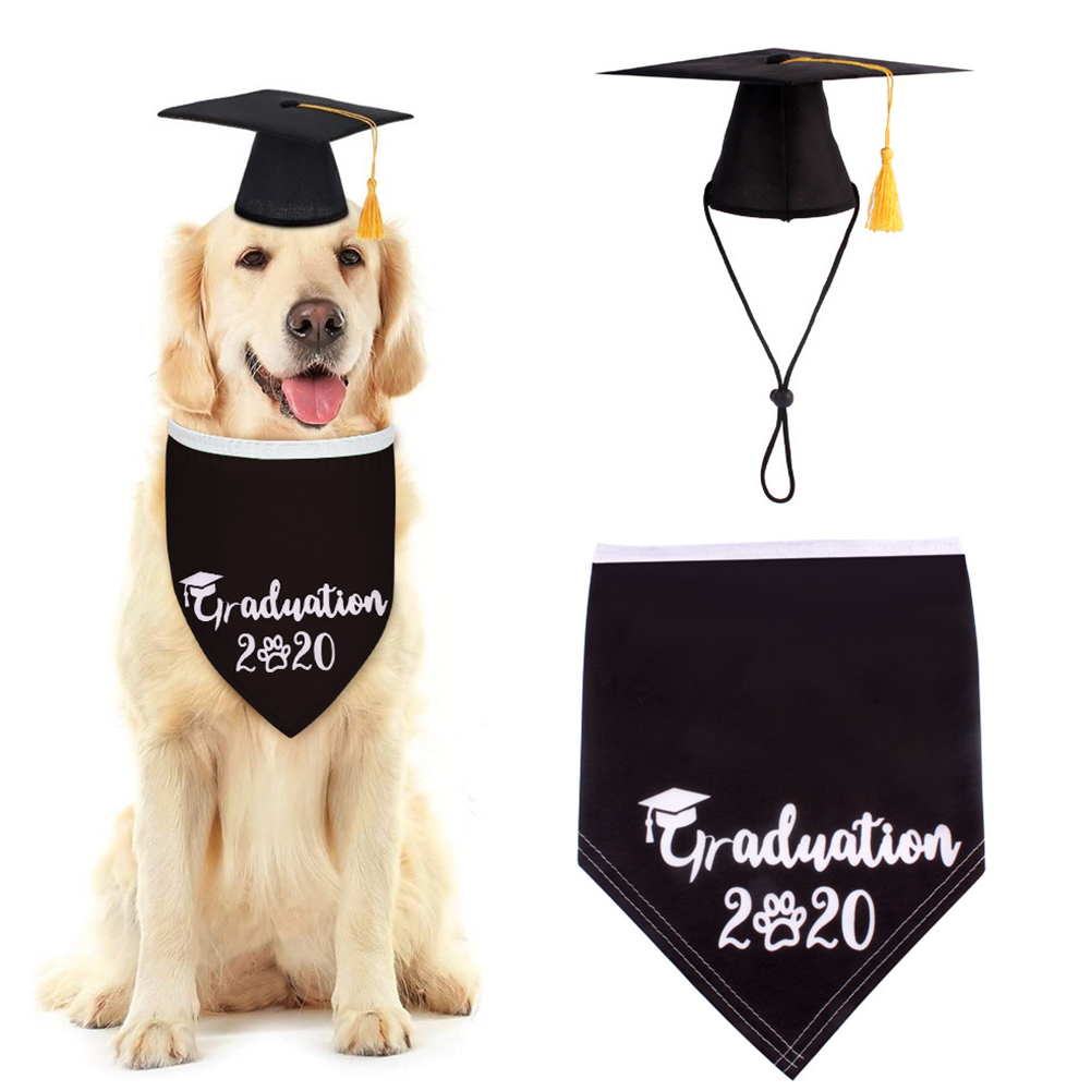 Small Dog Doctor  Hat With Dog Triangle Scarf Dog Hat Small Graduation Cap Pet Hat With Scarf black