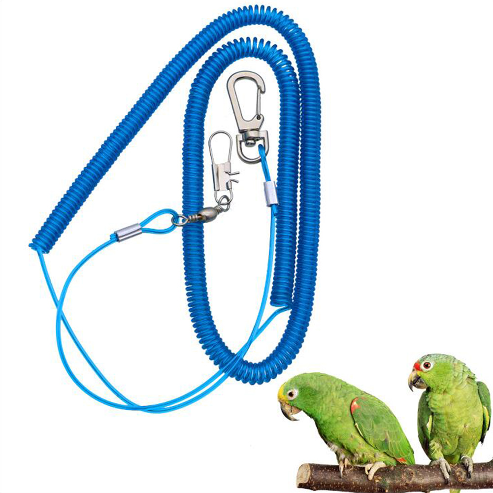 8# Outdoor Flying Elastic Rope for Parrot Birds Training Random Color Ring 8_3 meter flight rope