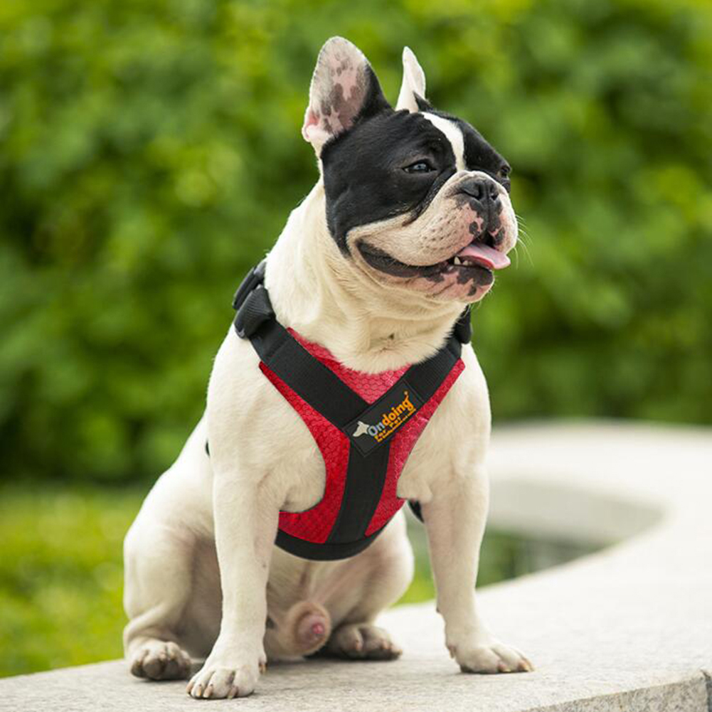 Breathable Mesh Bite Resisitant Vest Style Pet Harness with Buckle for Pet Dogs Outdoor Use