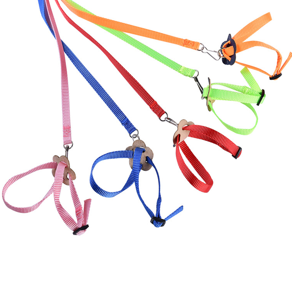 8 Shape Flying Training Rope Pet Leash for Parrot Bird Hamster Tortoise Lizard red