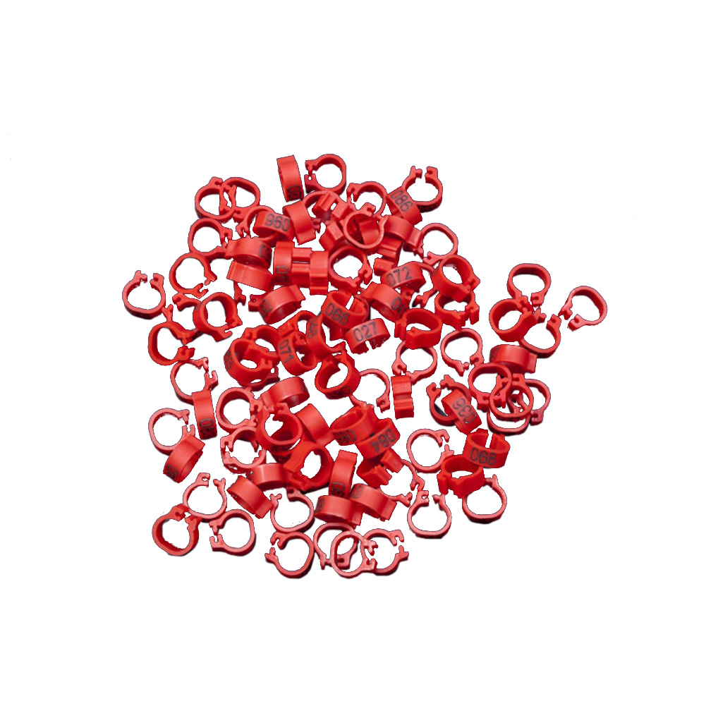 0-100 Number Solid Color Front Opening Pigeons Birds Foot Ring for Marking  bright red