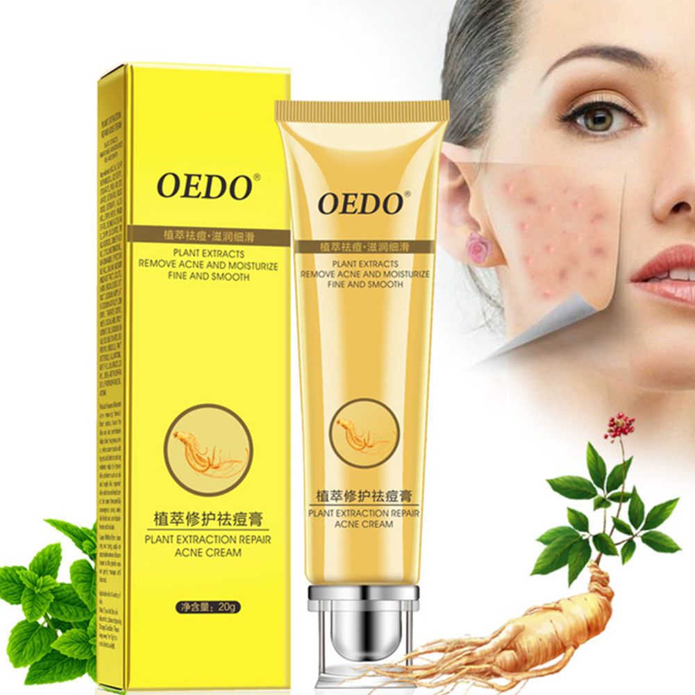 Plant Extraction Repair Acne Cream Ginseng Scutellariae Extract Ance Treatment Whitening Skin Care Cream