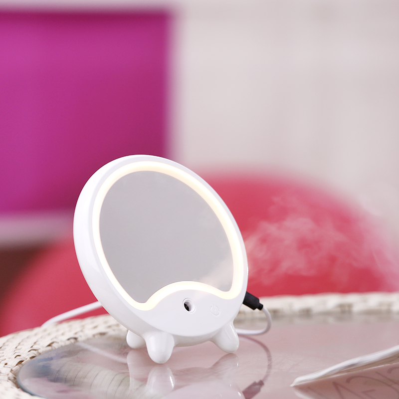 LED Makeup Mirror With Humidifier