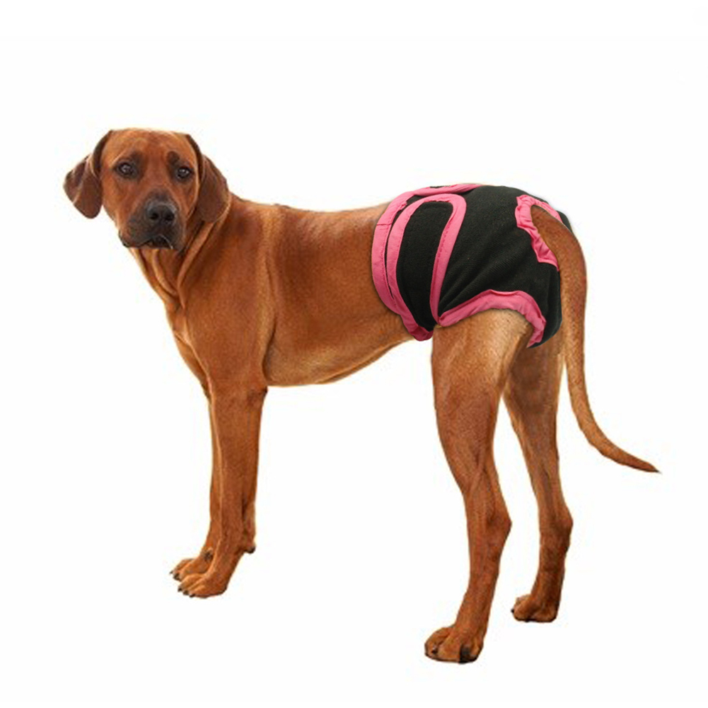 Female Breathable Physiological Pants for Small Meidium Pets Dogs black_XL