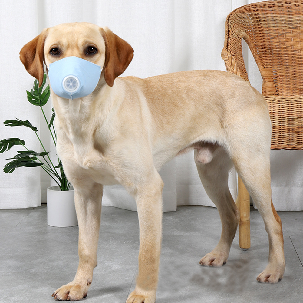 Pet Dog Soft Face Cotton Mouth Cover Respiratory Filter Anti-fog Haze Muzzle Face Guard Light blue 3pcs/set_S